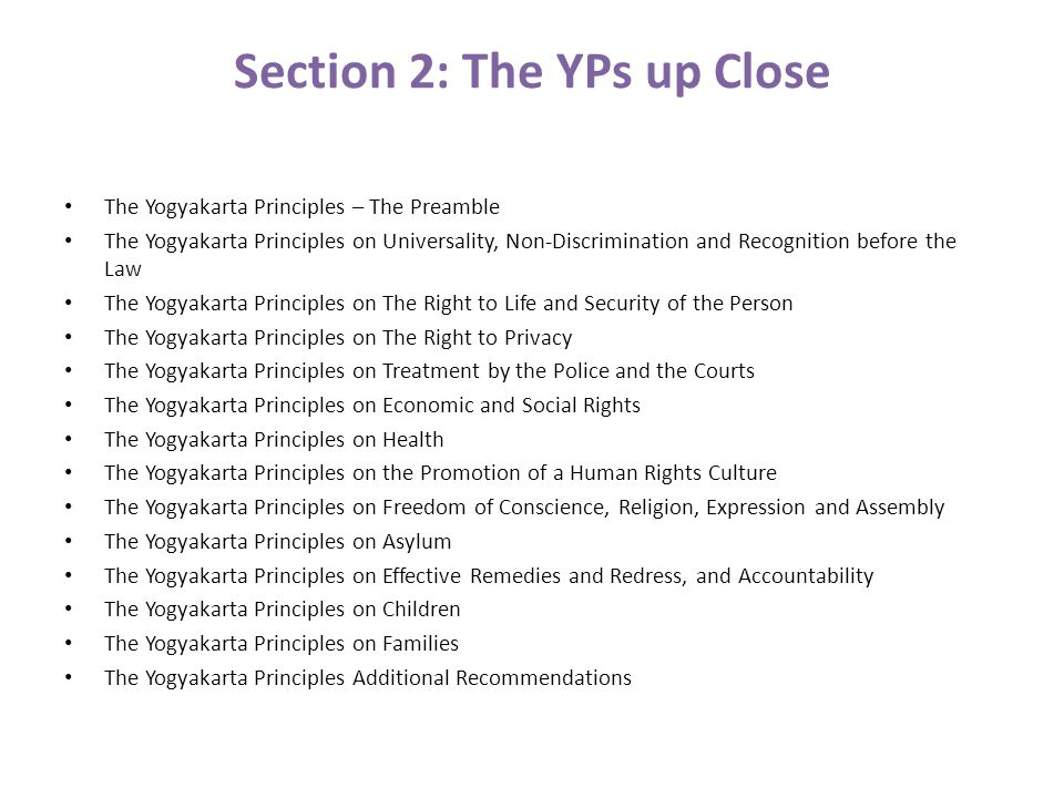 Section 2: The YPs up Close The Yogyakarta Principles – The Preamble The Yogyakarta Principles on Universality, Non-Discrimination and Recognition before the Law The Yogyakarta Principles on The Right to Life and Security of the Person The Yogyakarta Principles on The Right to Privacy The Yogyakarta Principles on Treatment by the Police and the Courts The Yogyakarta Principles on Economic and Social Rights The Yogyakarta Principles on Health The Yogyakarta Principles on the Promotion of a Human Rights Culture The Yogyakarta Principles on Freedom of Conscience, Religion, Expression and Assembly The Yogyakarta Principles on Asylum The Yogyakarta Principles on Effective Remedies and Redress, and Accountability The Yogyakarta Principles on Children The Yogyakarta Principles on Families The Yogyakarta Principles Additional Recommendations