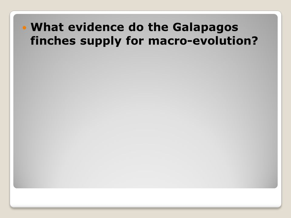 What evidence do the Galapagos finches supply for macro-evolution