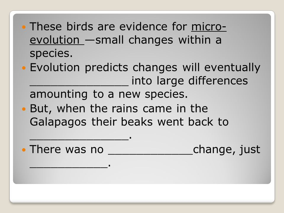 These birds are evidence for micro- evolution —small changes within a species.
