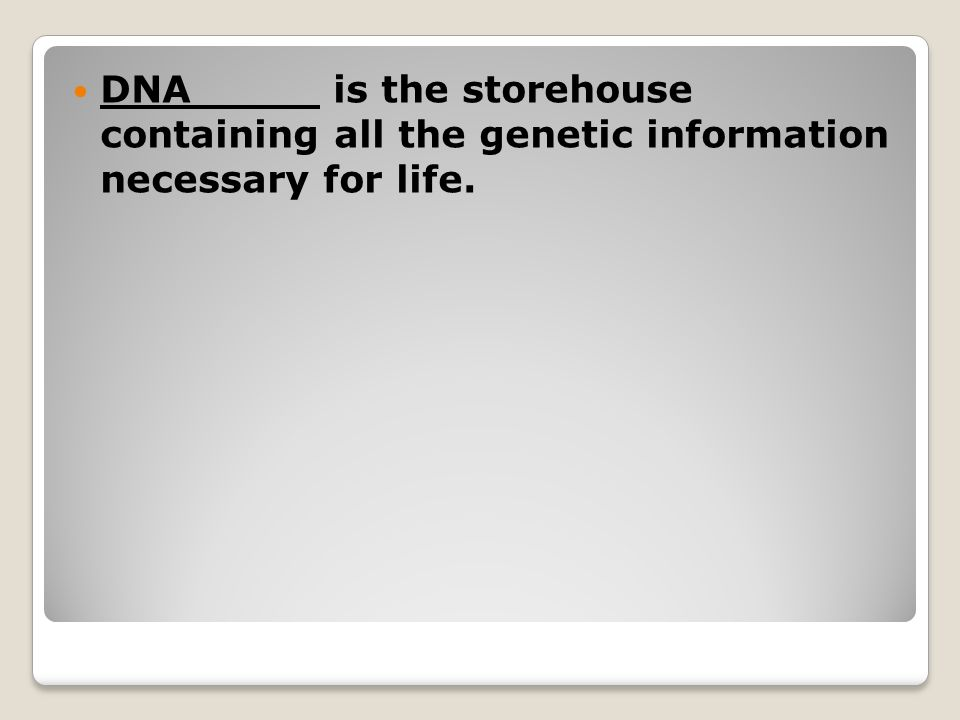 DNA is the storehouse containing all the genetic information necessary for life.