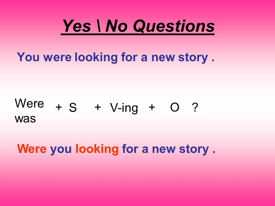Yes \ No Questions You were looking for a new story.