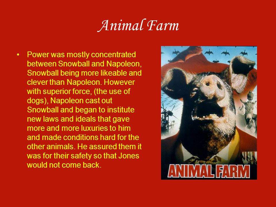 Animal Farm Power was mostly concentrated between Snowball and Napoleon, Snowball being more likeable and clever than Napoleon. However with superior