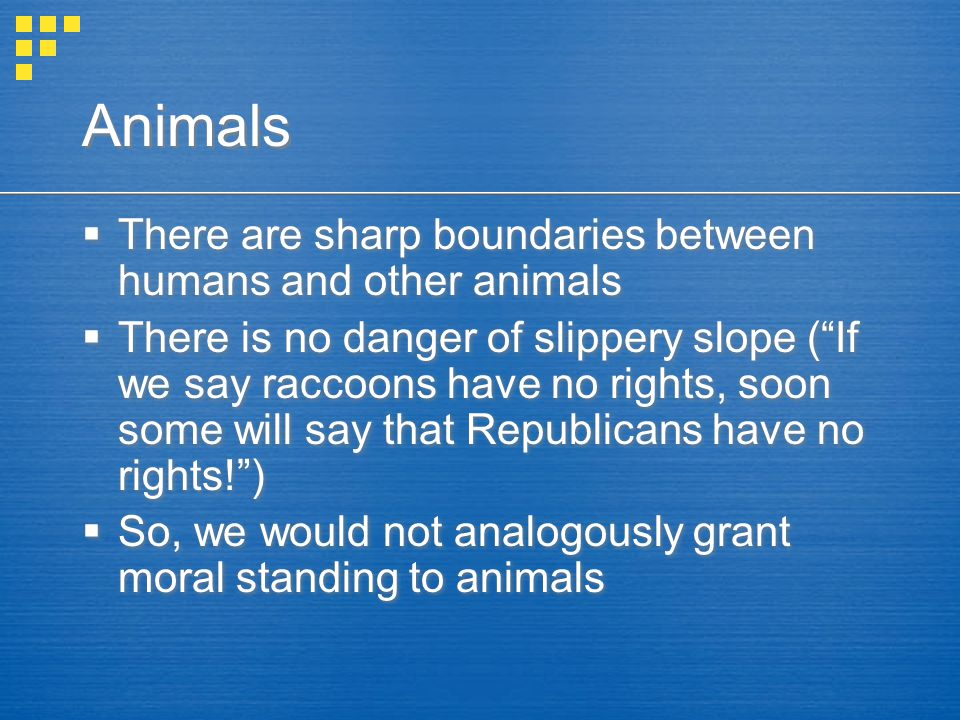 Animals  There are sharp boundaries between humans and other animals  There is no danger of slippery slope ( If we say raccoons have no rights, soon some will say that Republicans have no rights! )  So, we would not analogously grant moral standing to animals  There are sharp boundaries between humans and other animals  There is no danger of slippery slope ( If we say raccoons have no rights, soon some will say that Republicans have no rights! )  So, we would not analogously grant moral standing to animals