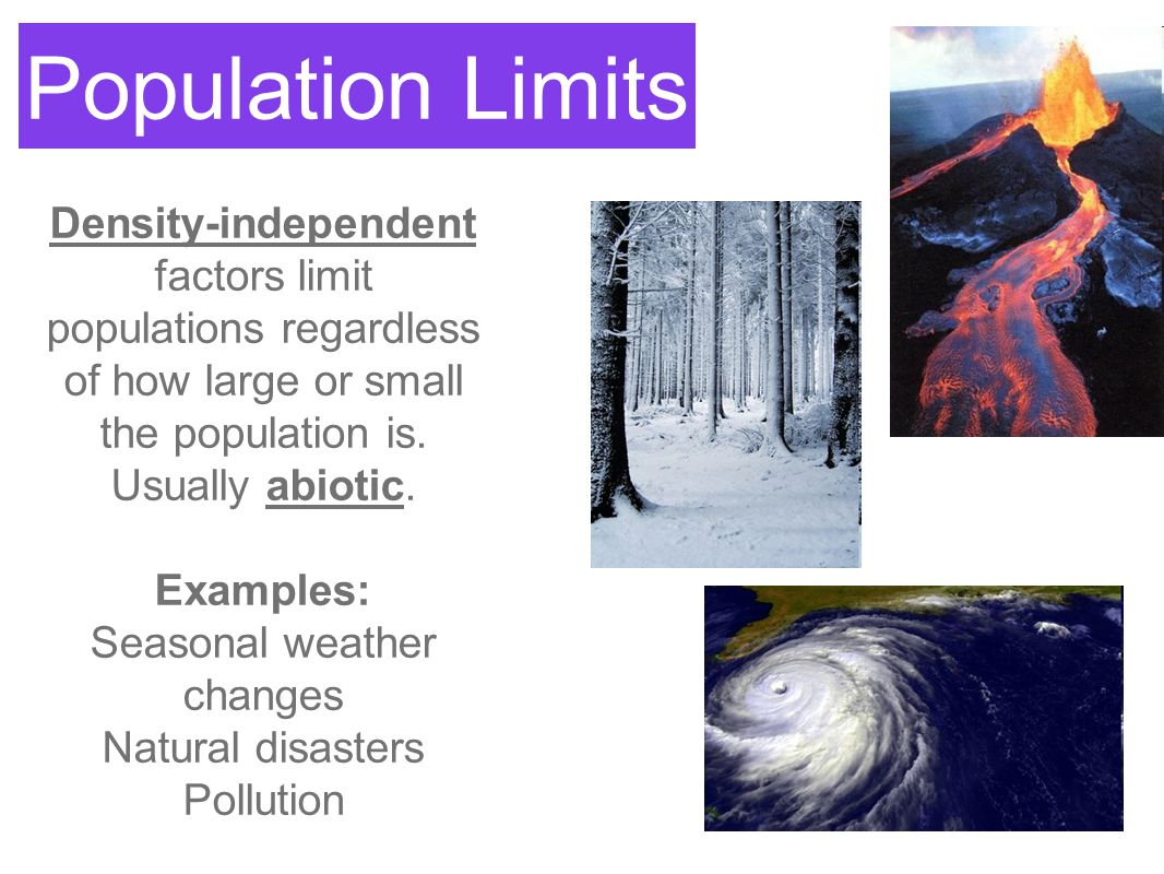 Population Limits Density-independent factors limit populations regardless of how large or small the population is. Usually abiotic. Examples: Seasona