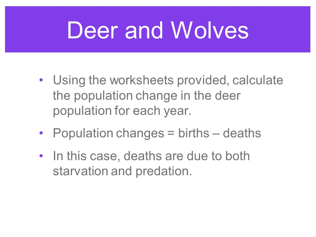 Deer and Wolves Using the worksheets provided, calculate the population change in the deer population for each year. Population changes = births – dea