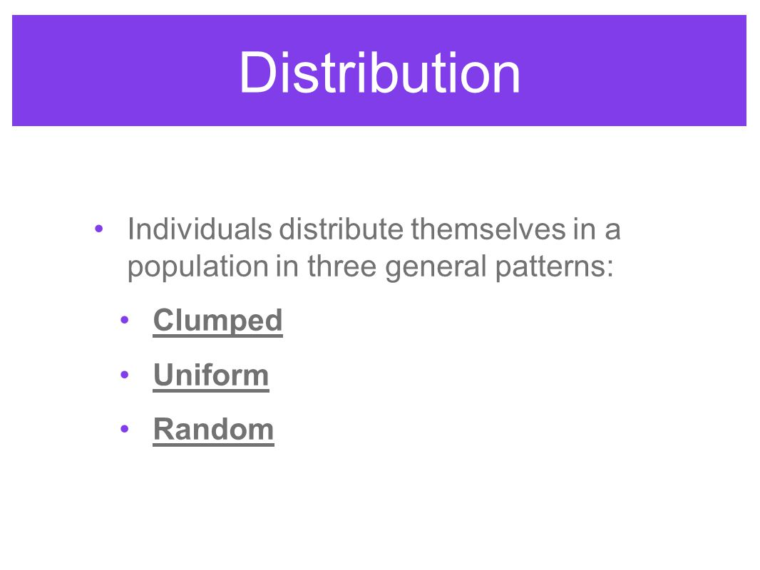 Distribution Individuals distribute themselves in a population in three general patterns: Clumped Uniform Random