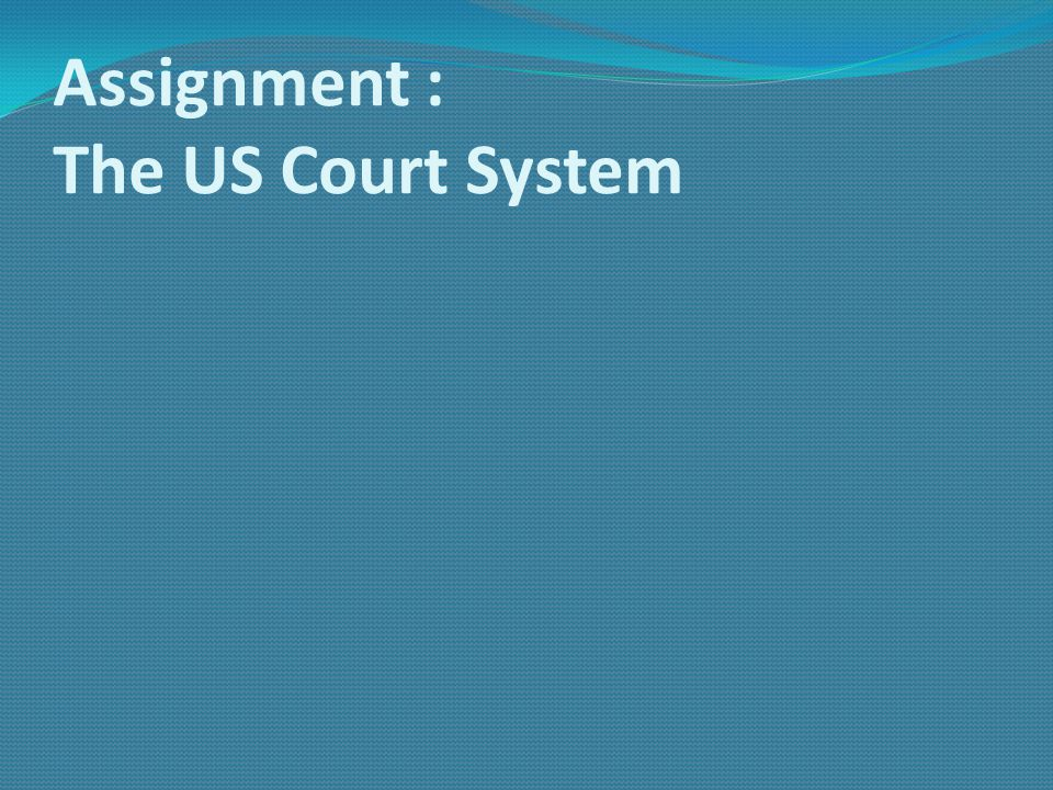Assignment : The US Court System