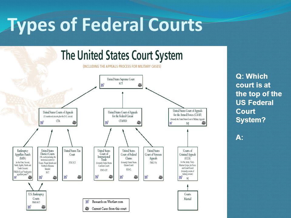 Types of Federal Courts Q: Which court is at the top of the US Federal Court System? A: