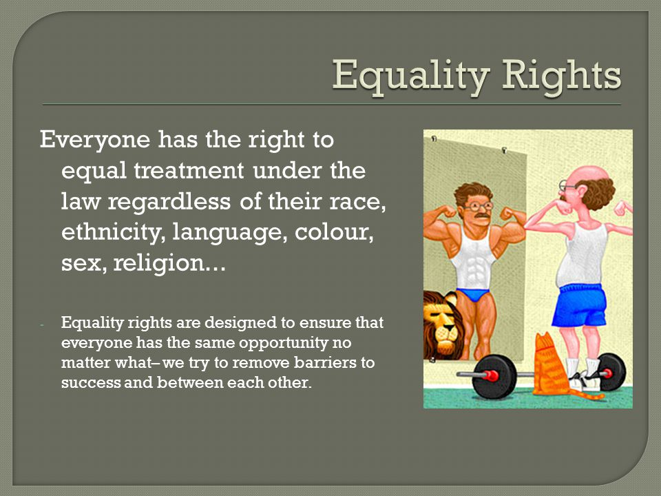 Everyone has the right to equal treatment under the law regardless of their race, ethnicity, language, colour, sex, religion... - Equality rights are