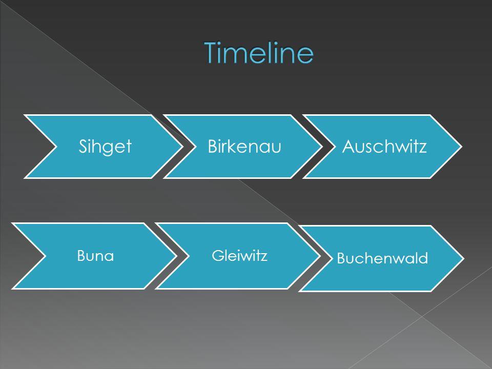 SihgetBirkenauAuschwitz BunaGleiwitz Buchenwald