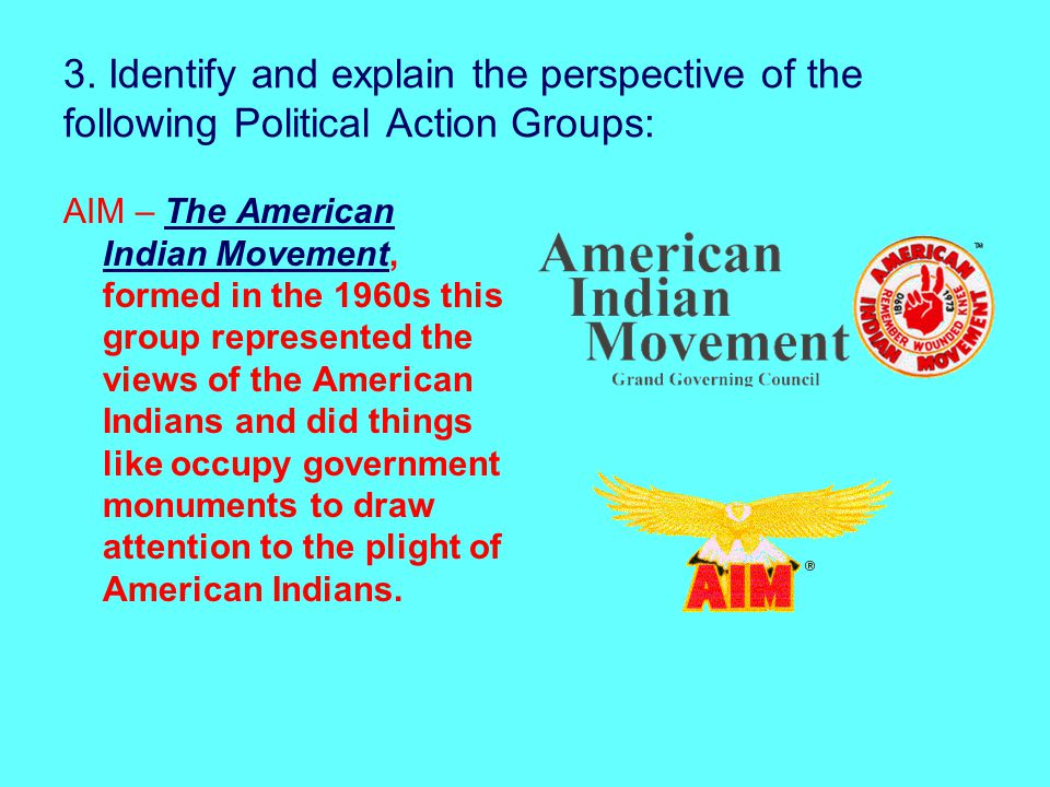 3. Identify and explain the perspective of the following Political Action Groups: AIM – The American Indian Movement, formed in the 1960s this group r