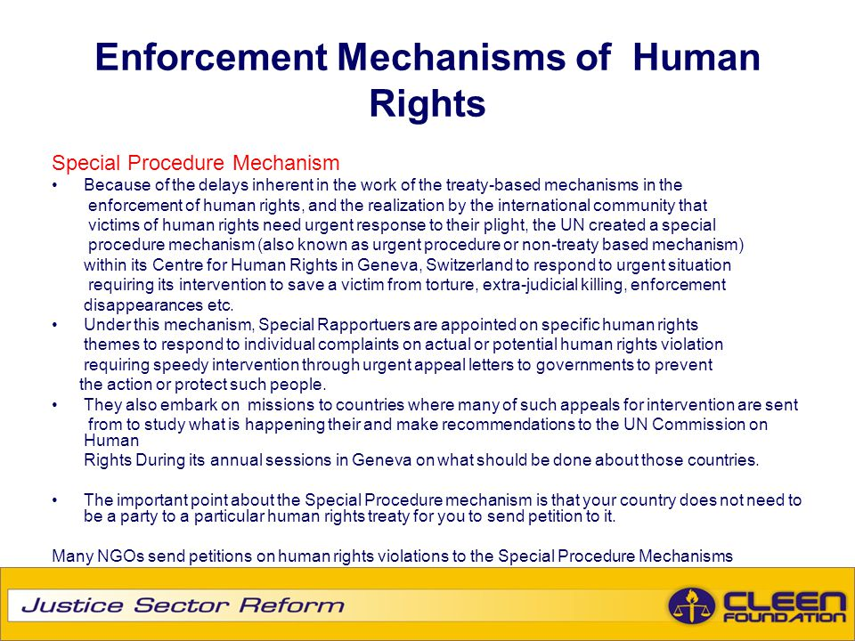 Enforcement Mechanisms of Human Rights Special Procedure Mechanism Because of the delays inherent in the work of the treaty-based mechanisms in the en