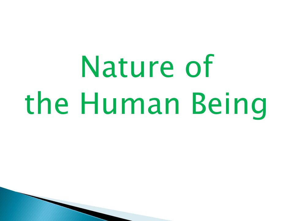 Nature of the Human Being