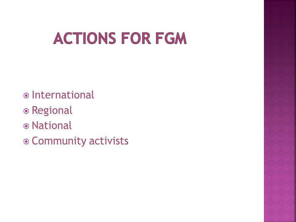  International  Regional  National  Community activists