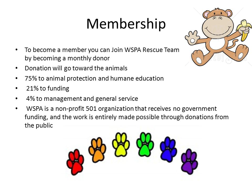 Membership To become a member you can Join WSPA Rescue Team by becoming a monthly donor Donation will go toward the animals 75% to animal protection a