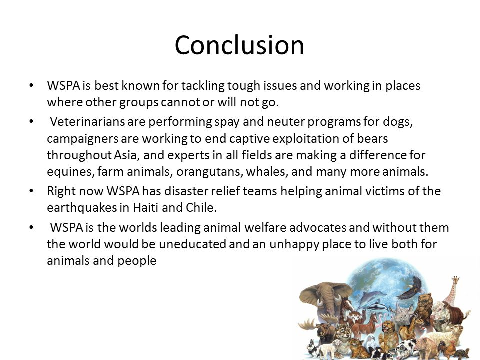 Conclusion WSPA is best known for tackling tough issues and working in places where other groups cannot or will not go. Veterinarians are performing s
