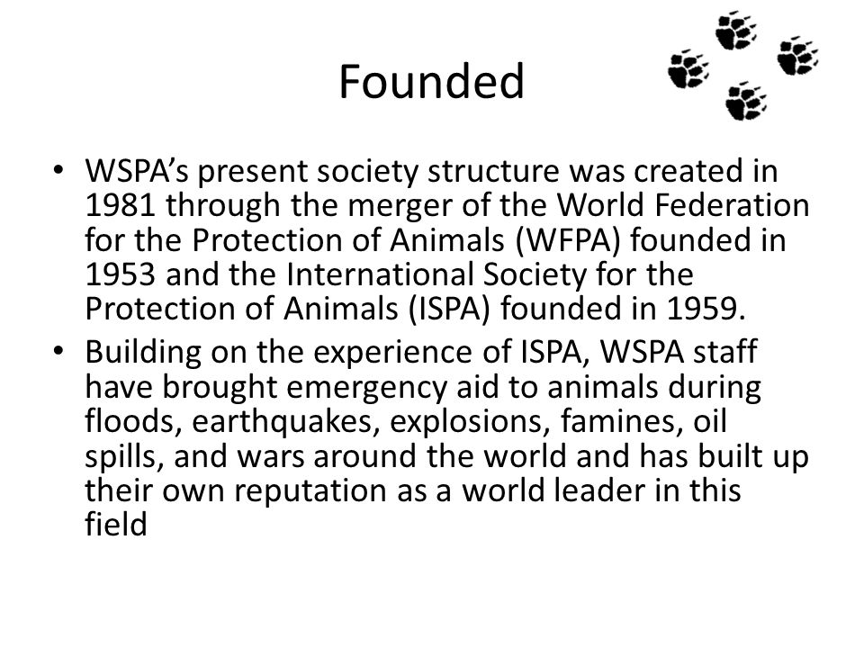 Founded WSPA's present society structure was created in 1981 through the merger of the World Federation for the Protection of Animals (WFPA) founded i