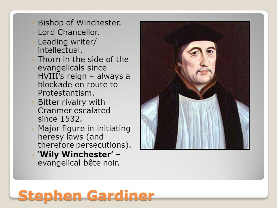 Stephen Gardiner ◦Bishop of Winchester. ◦Lord Chancellor.