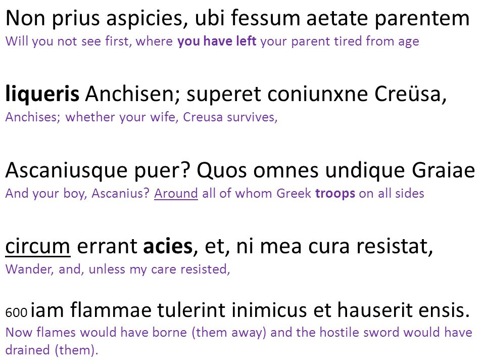 Non prius aspicies, ubi fessum aetate parentem Will you not see first, where you have left your parent tired from age liqueris Anchisen; superet coniunxne Creüsa, Anchises; whether your wife, Creusa survives, Ascaniusque puer.