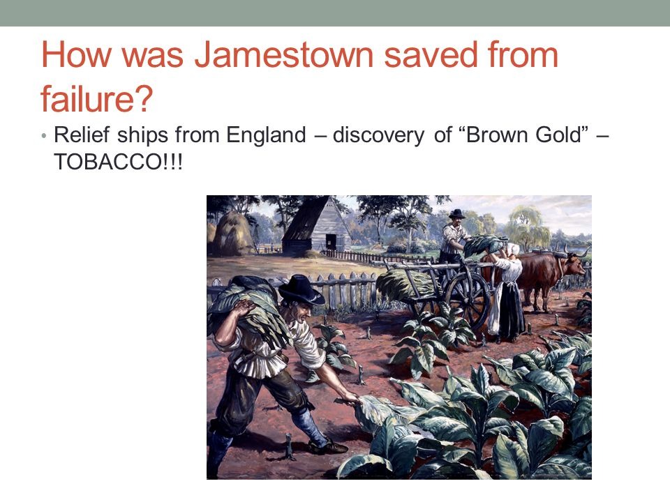 How was Jamestown saved from failure.