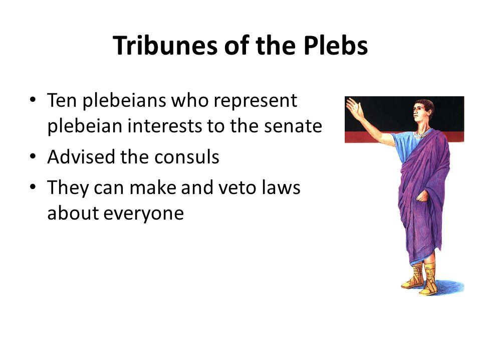 Tribunes of the Plebs Ten plebeians who represent plebeian interests to the senate Advised the consuls They can make and veto laws about everyone