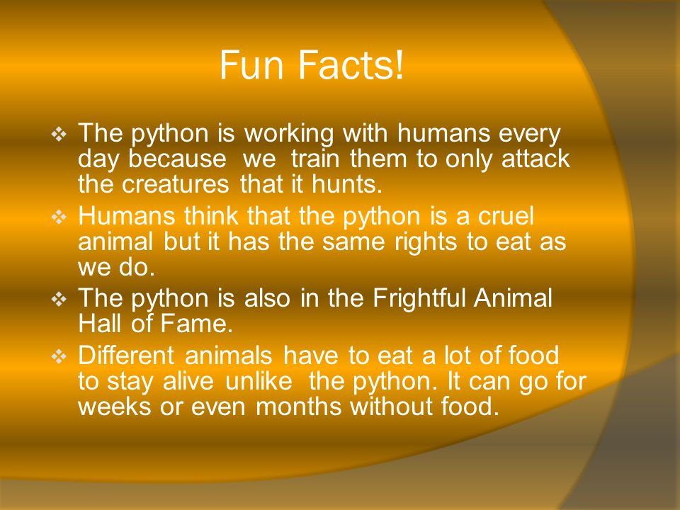 Fun Facts.