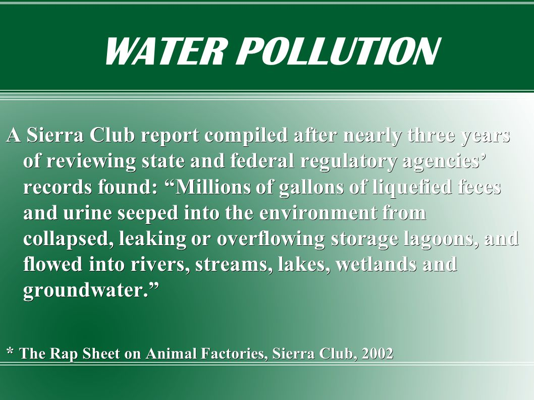 WATER POLLUTION A Sierra Club report compiled after nearly three years of reviewing state and federal regulatory agencies' records found: Millions of gallons of liquefied feces and urine seeped into the environment from collapsed, leaking or overflowing storage lagoons, and flowed into rivers, streams, lakes, wetlands and groundwater. * The Rap Sheet on Animal Factories, Sierra Club, 2002