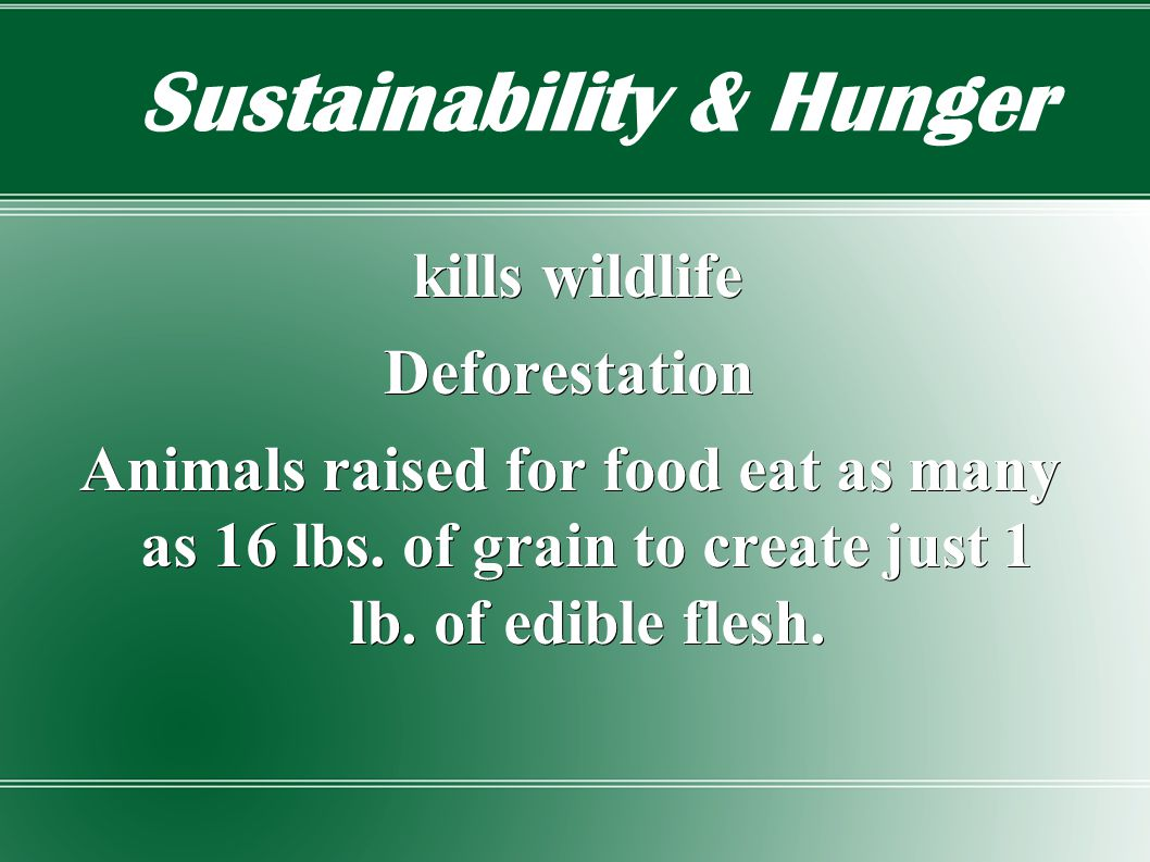 Sustainability & Hunger kills wildlife kills wildlifeDeforestation Animals raised for food eat as many as 16 lbs.