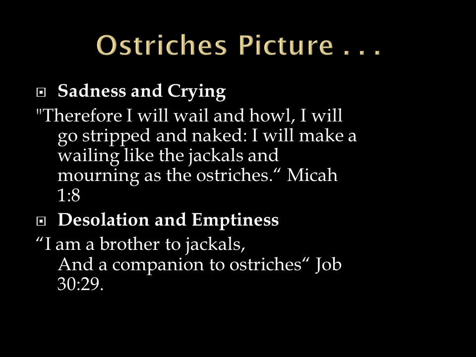  Sadness and Crying Therefore I will wail and howl, I will go stripped and naked: I will make a wailing like the jackals and mourning as the ostriches. Micah 1:8  Desolation and Emptiness I am a brother to jackals, And a companion to ostriches Job 30:29.