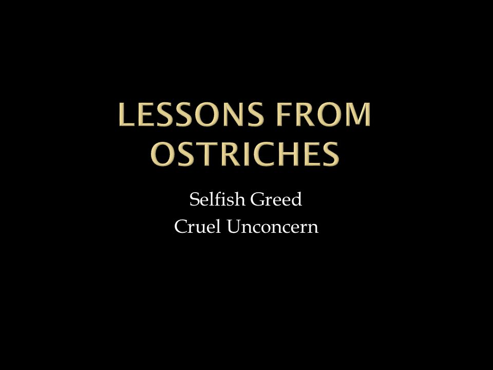 Selfish Greed Cruel Unconcern