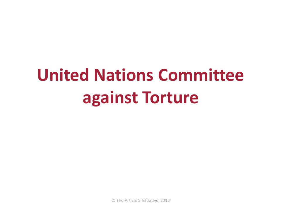 United Nations Committee against Torture © The Article 5 Initiative, 2013
