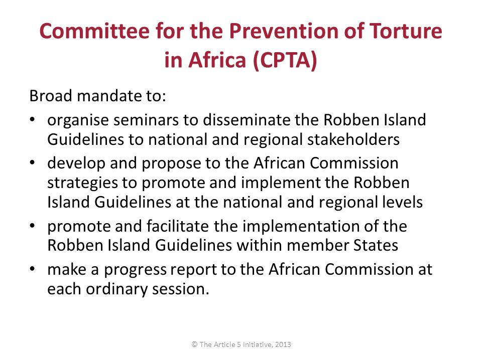 Committee for the Prevention of Torture in Africa (CPTA) Broad mandate to: organise seminars to disseminate the Robben Island Guidelines to national and regional stakeholders develop and propose to the African Commission strategies to promote and implement the Robben Island Guidelines at the national and regional levels promote and facilitate the implementation of the Robben Island Guidelines within member States make a progress report to the African Commission at each ordinary session.