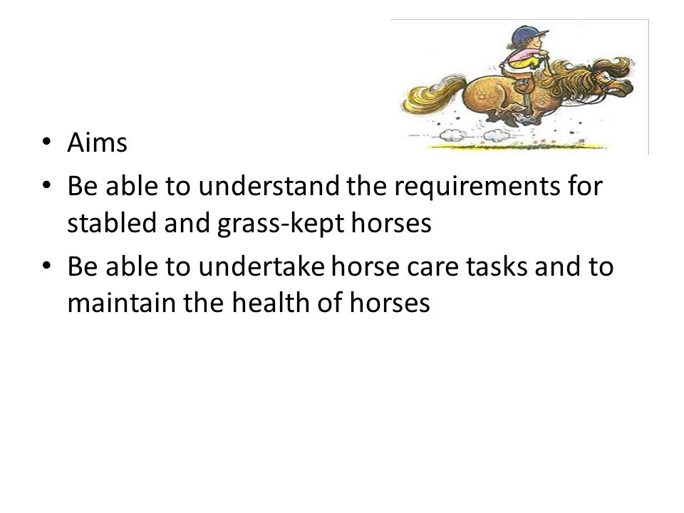 Objectives – To understand the requirements of the assignment, in relation to the written case study.