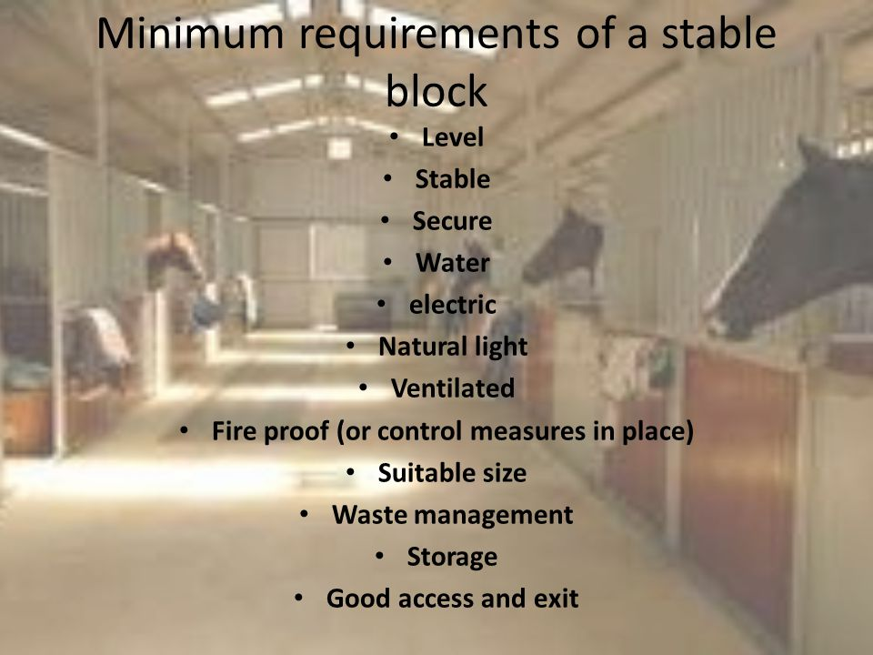 Minimum requirements of a stable block Level Stable Secure Water electric Natural light Ventilated Fire proof (or control measures in place) Suitable size Waste management Storage Good access and exit