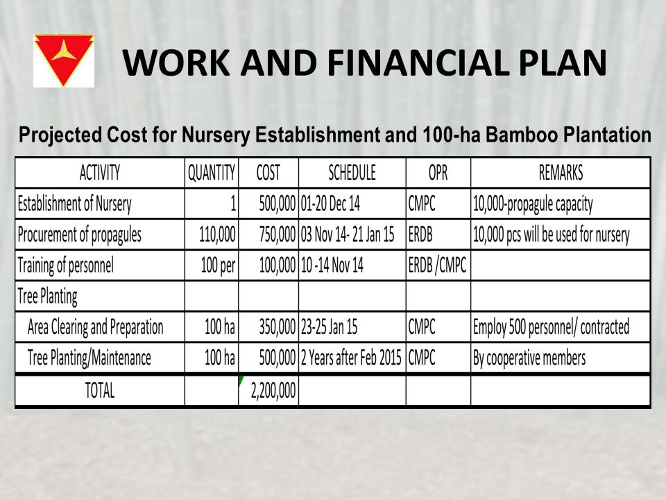 WORK AND FINANCIAL PLAN Projected Cost for Nursery Establishment and 100-ha Bamboo Plantation