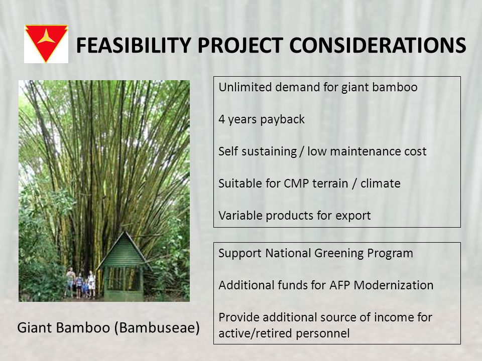 FEASIBILITY PROJECT CONSIDERATIONS Unlimited demand for giant bamboo 4 years payback Self sustaining / low maintenance cost Suitable for CMP terrain / climate Variable products for export Support National Greening Program Additional funds for AFP Modernization Provide additional source of income for active/retired personnel Giant Bamboo (Bambuseae)