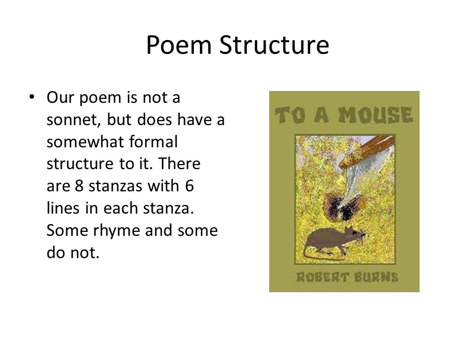 Poem Structure Our poem is not a sonnet, but does have a somewhat formal structure to it.