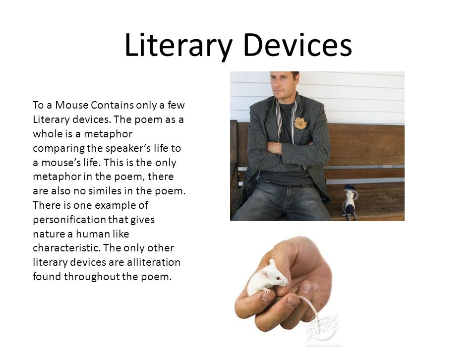Literary Devices To a Mouse Contains only a few Literary devices.