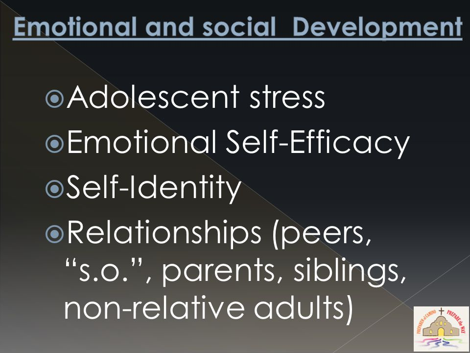  Adolescent stress  Emotional Self-Efficacy  Self-Identity  Relationships (peers, s.o. , parents, siblings, non-relative adults)