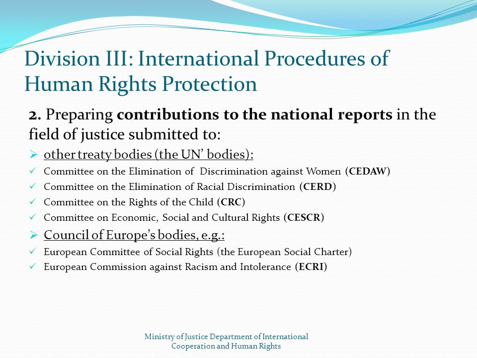 2. Preparing contributions to the national reports in the field of justice submitted to:  other treaty bodies (the UN' bodies): Committee on the Elim