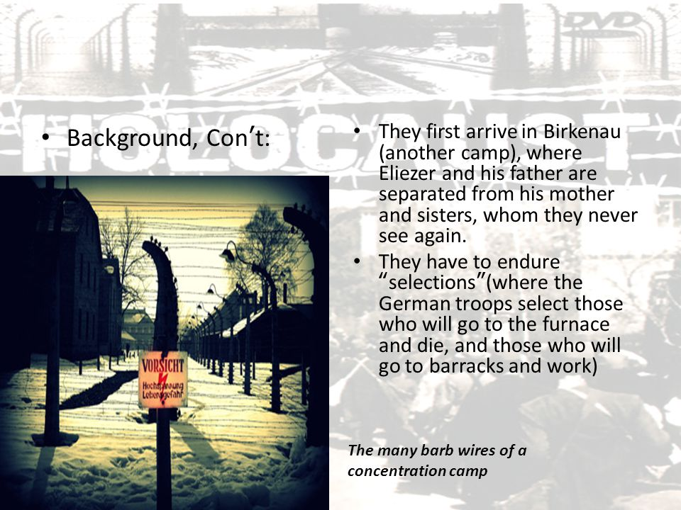 Background, Con't: They first arrive in Birkenau (another camp), where Eliezer and his father are separated from his mother and sisters, whom they nev