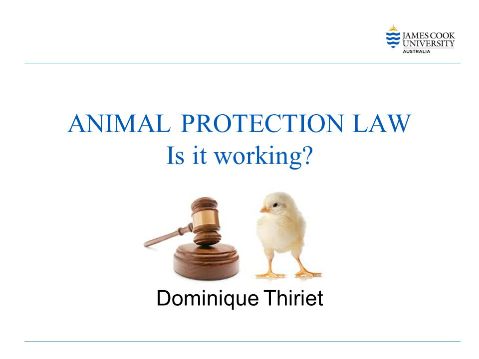ANIMAL PROTECTION LAW Is it working? Dominique Thiriet