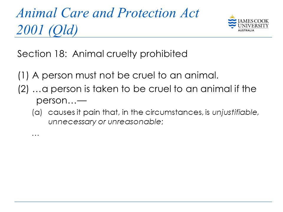 Animal Care and Protection Act 2001 (Qld) Section 18: Animal cruelty prohibited (1) A person must not be cruel to an animal.