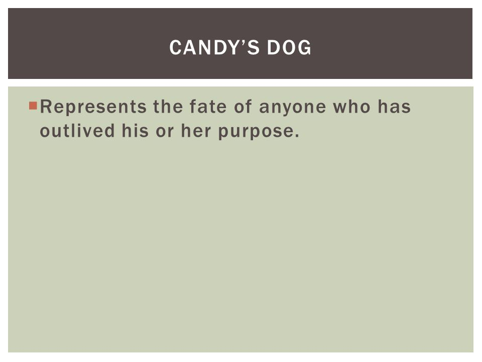  Represents the fate of anyone who has outlived his or her purpose. CANDY'S DOG