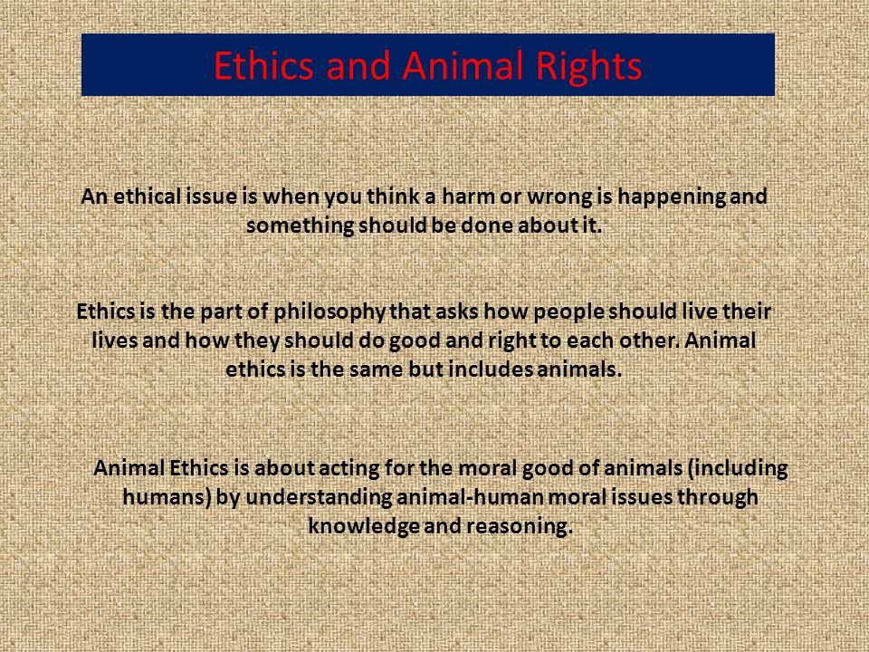 Ethics is the part of philosophy that asks how people should live their lives and how they should do good and right to each other.