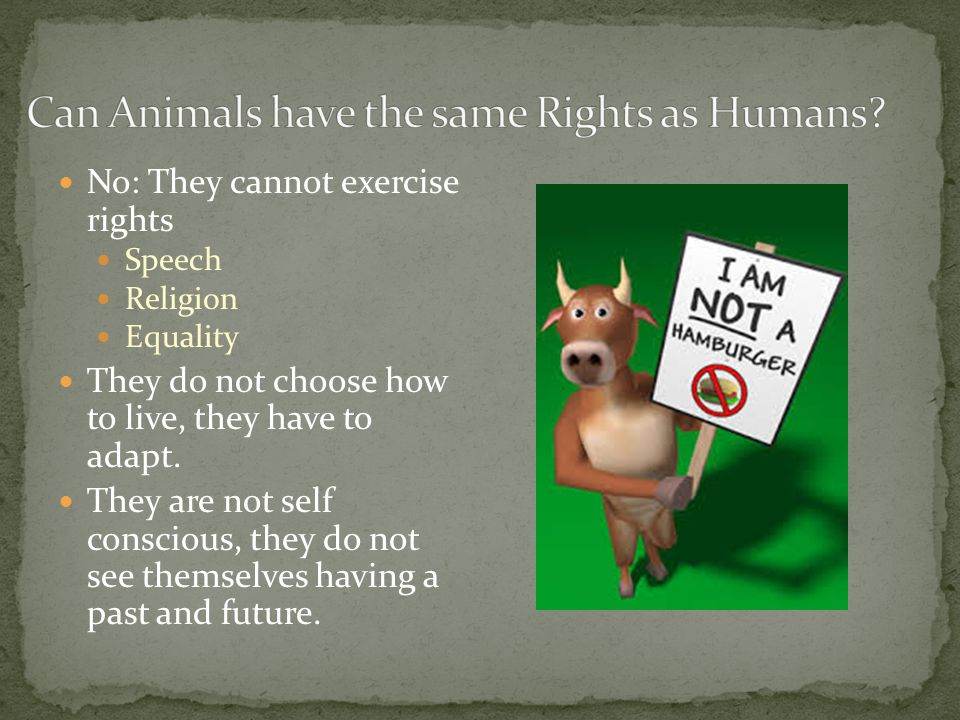 No: They cannot exercise rights Speech Religion Equality They do not choose how to live, they have to adapt.