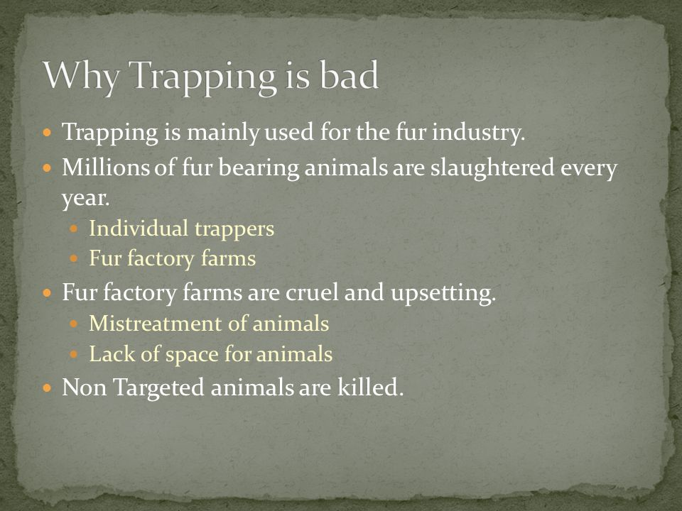 Trapping is mainly used for the fur industry.