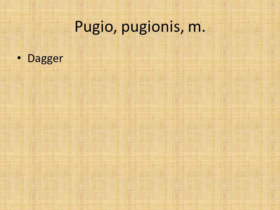 Pugio, pugionis, m. Dagger