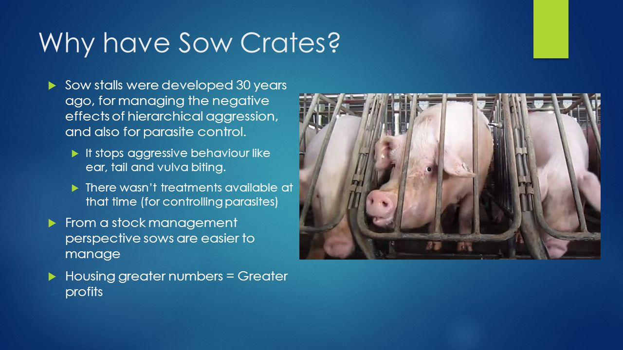 Why have Sow Crates.