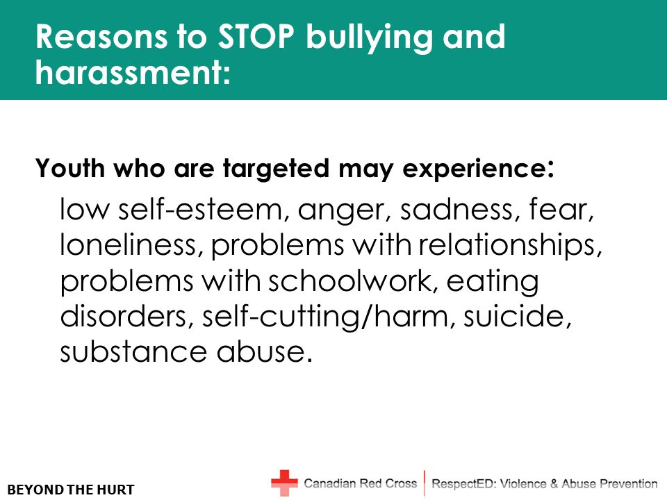 BEYOND THE HURT Reasons to STOP bullying and harassment : Youth who are targeted may experience : low self-esteem, anger, sadness, fear, loneliness, problems with relationships, problems with schoolwork, eating disorders, self-cutting/harm, suicide, substance abuse.